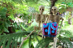 Dos esqueletos con los regalos a mano debajo del árbol Fotografía de archivo