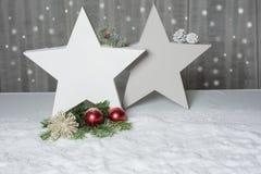 Dos estrellas con el abeto y conos que se colocan en nieve Foto de archivo