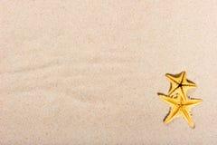Dos estrellas de mar en la arena fina Imagenes de archivo