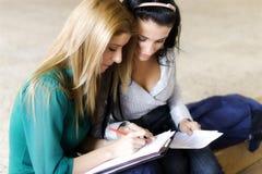 Dos estudiantes que aprenden junto Imagen de archivo