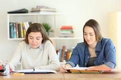 Dos estudiantes que estudian junto en casa Imagen de archivo libre de regalías