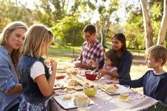 Dos familias que tienen una comida campestre en una tabla en un parque, cierre para arriba imagen de archivo