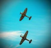 Dos fieras que vuelan en la formación foto de archivo libre de regalías
