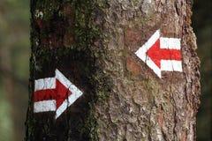 Dos flechas Foto de archivo libre de regalías
