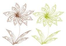 Dos flores, elemento del diseño Foto de archivo libre de regalías