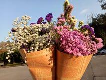 Dos flores secadas coloridas foto de archivo