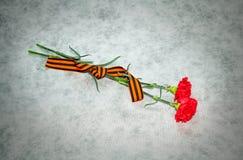 Dos flores y George Ribbon del clavel en un fondo ligero Fotos de archivo libres de regalías