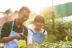 Dos florista asiático joven Working en la tienda Foto de archivo libre de regalías
