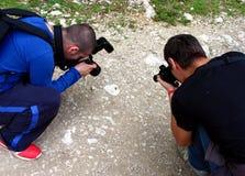 Dos fotógrafos que intentan una macro Imagen de archivo libre de regalías