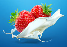 Dos fresas con el chapoteo de la leche aislado en backg azul Imágenes de archivo libres de regalías