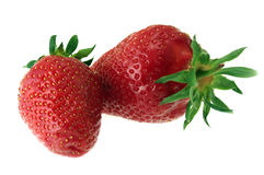 Dos fresas maduras Imagenes de archivo