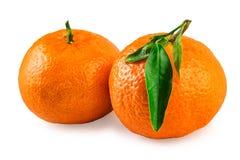 Dos frutas del mandarín Fotos de archivo libres de regalías