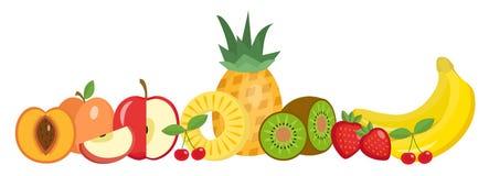 Dos frutos grupo da vida ainda, isolado no fundo branco Bandeira horizontal do fruto Ilustração do vetor Foto de Stock