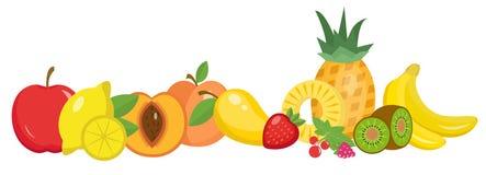 Dos frutos grupo da vida ainda, isolado no fundo branco Bandeira horizontal do fruto Ilustração do vetor Fotografia de Stock Royalty Free