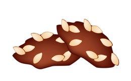 Dos galletas de almendra hechas en casa en el fondo blanco Imagen de archivo libre de regalías