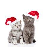 Dos gatitos del bebé en los sombreros rojos de santa que miran para arriba En blanco Foto de archivo libre de regalías