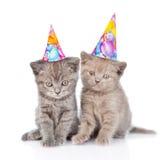 Dos gatitos divertidos con los sombreros del cumpleaños Aislado en el fondo blanco Imagenes de archivo