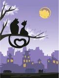 Dos gatos cariñosos en un árbol sobre la ciudad de la noche Imágenes de archivo libres de regalías