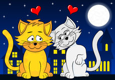 Dos gatos cariñosos Fotografía de archivo libre de regalías