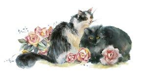 Dos gatos de la acuarela Imágenes de archivo libres de regalías