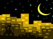 Dos gatos en el amor que se sienta en el edificio con Crescent Moon en la noche, par del amante, vector ilustración del vector