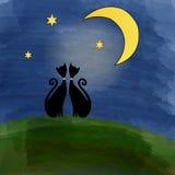 Dos gatos en un prado debajo de la luna Foto de archivo libre de regalías