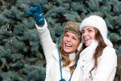 Dos gemelos alegres de las muchachas, en el parque Fotografía de archivo libre de regalías