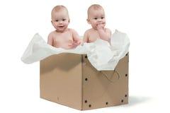 Dos gemelos del bebé en el rectángulo Imagenes de archivo