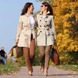 Dos gemelos felices de las muchachas, en el parque del otoño Foto de archivo libre de regalías