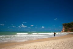 Dos Golfinhos van Baia dichtbij pipa Brazilië Stock Afbeelding