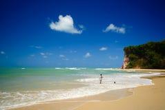 Dos Golfinhos van Baia dichtbij pipa Brazilië Stock Foto's