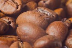 Dos grãos de café close-up muito, fotografia macro Fotografia de Stock