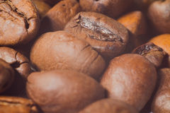 Dos grãos de café close-up muito, fotografia macro Imagens de Stock Royalty Free