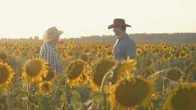 Dos granjeros en un campo con los girasoles en la puesta del sol con una tableta almacen de video