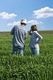 Dos granjeros en un campo de trigo. Fotos de archivo