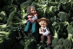 Dos granjeros se relajan en una pila de bróculi, con una oveja y un pato Foto de archivo libre de regalías
