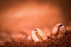 Dos granos de café en el montón asado del café Imágenes de archivo libres de regalías