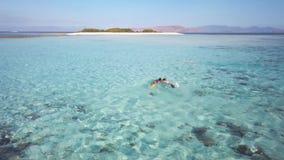 Dos hembras jovenes nadan subacuático, explorando el fondo oceánico, yendo a la isla hermosa, lugar magnífico para almacen de metraje de vídeo