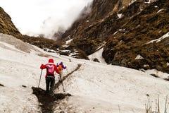 Dos hembras que caminan en un rastro nevoso hacia la montaña fotografía de archivo libre de regalías