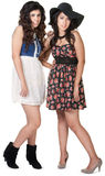 Dos hermanas del inconformista Imagenes de archivo