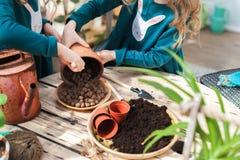 Dos hermanas están trasplantando las flores en potes en el invernadero Niñas con los rizos en vestidos verdes y cultivar un huert Imagenes de archivo