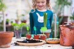 Dos hermanas están trasplantando las flores en potes en el invernadero Niñas con los rizos en vestidos verdes y cultivar un huert Fotografía de archivo libre de regalías