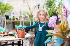 Dos hermanas están trasplantando las flores en potes en el invernadero Niñas con los rizos en vestidos verdes y cultivar un huert Imágenes de archivo libres de regalías