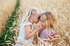 Dos hermanas hermosas en un campo de trigo Fotos de archivo