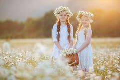 Dos hermanas lindas en la manzanilla colocan con la cesta de flores Foto de archivo libre de regalías