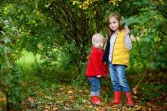 Dos hermanas que juegan afuera en un día del otoño Imagen de archivo