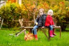 Dos hermanas que se sientan en un banco el día del otoño Foto de archivo