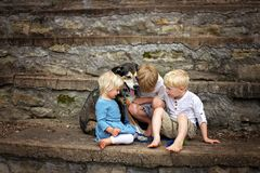 Dos hermanos mayores y su buen perro están consolando a su pequeña hermana gritadora fotografía de archivo libre de regalías