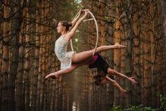 Dos hermosos y gimnastas delgados que hacen ejercicios difíciles en el anillo aéreo Fotografía de archivo libre de regalías
