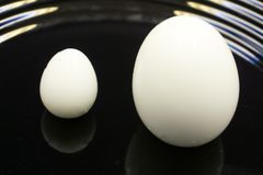 Dos hirvieron los huevos, uno en una huevera blanca con el huevo de la palabra en negro en la taza El otro huevo en la placa de l imágenes de archivo libres de regalías